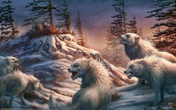 люди, охотники, волки, kerem beyit