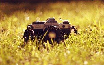 трава, фотоаппарат, объектив, антиквариат, канон