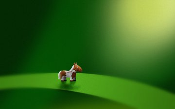 лошадь, зелёный, лист, пони, микро