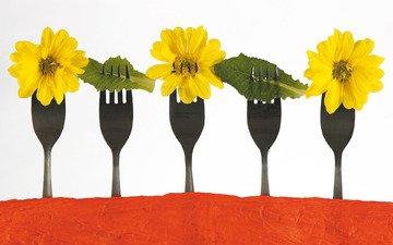 хризантемы, вилки, обед