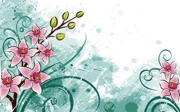 цветы, зелёный, белый