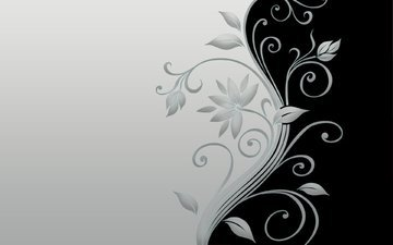 минимал, блака, blossom, цветком, грей