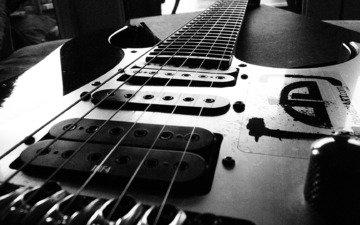чёрно-белое, струны, черная, электрогитара, звукосниматели