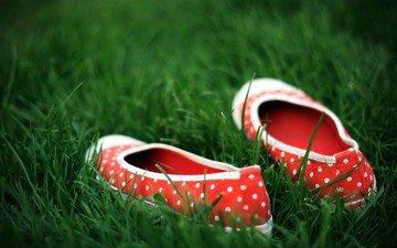 трава, зелёный, обувь, горошек