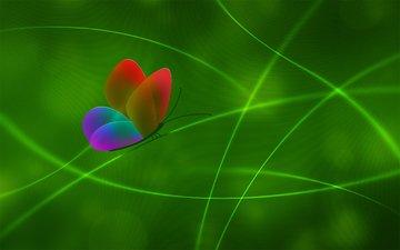 линии, зелёный, цвет, бабочка