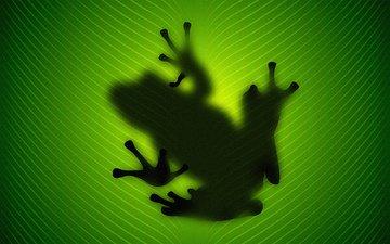 зелёный, лист, лягушка