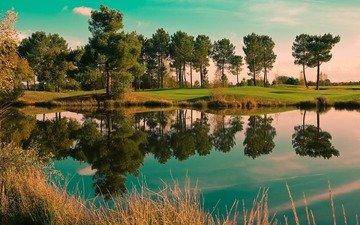 деревья, вода, река, лес, пейзаж, пейзажи, деревь, lakes, nature pictures