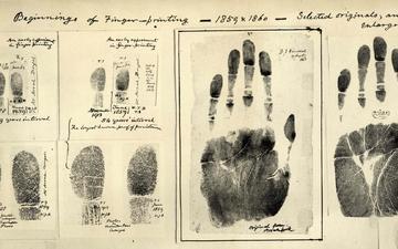 первые, отпечатки, пальцев
