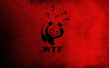панда, красный, китай, винни-пух, wtf, знак вопроса, большие глаза.