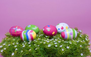 grass, easter, eggs, easter eggs, pascha, he is risen__nie christo__in, chickens