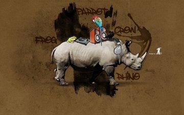 граффити, носорог, попугай, лягуха, ворона, дезайн