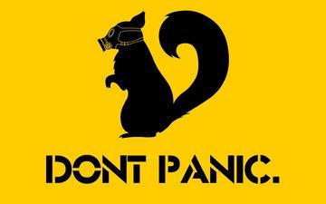противогаз, do not panic, скунс