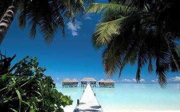 небо, вода, берег, мостик, море, песок, пляж, лето, пальмы, дома, океан, mальдивы