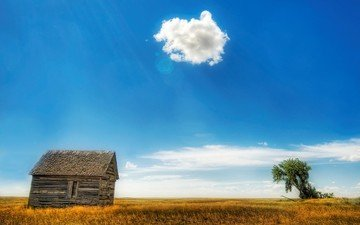 clouds, tree, field, house