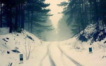 дорога, деревья, снег, природа, лес, зима, туман, ветки, мороз, силуэты, сосны, тишина, дымка, следы колес, холодно