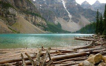 река, горы, скалы, лес, бревна, переправа, вырубка