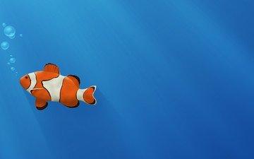 синий, пузыри, золотая рыбка, рыба-клоун