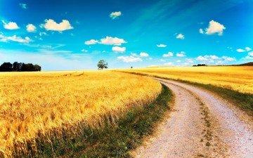 небо, дорога, облака, поле
