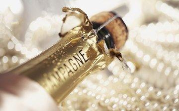 champagne, pearl