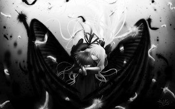 белая, блака, крылышки