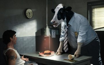 cow, questioning, the investigator