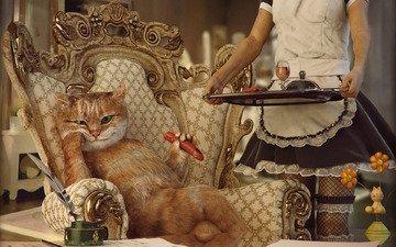 девушка, кот, ситуация, кресло, обед, сосиска, прислуга