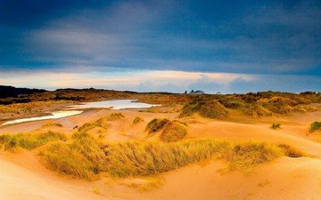 песок, пустыня, лужа