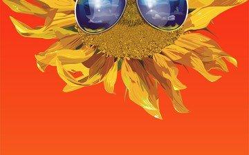 vector, glasses, sunflower, orange