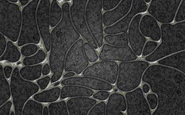 серый, клетки, оболочки