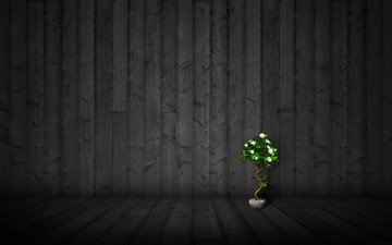 flowers, wallpaper, style, wall, minimalism, mood, pot