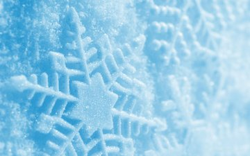 снег, зима, голубой, след