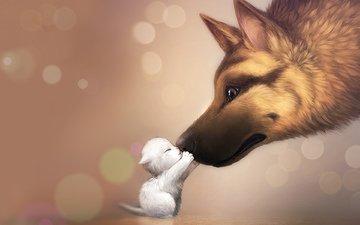 котенок, собака, любовь, нежность, семья, mommy, киса, cобака