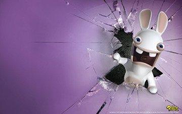 rabbit, screen