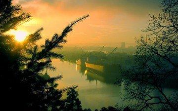 деревья, утро, порт