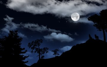 небо, ночь, обои, пейзаж, звезды, луна, волки