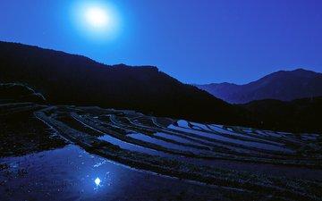 ночь, луна, япония, японии, moon, рисовое поле