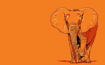 elephant, giant, orange