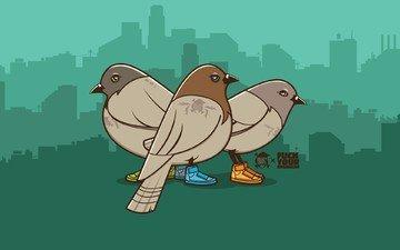 вектор, кеды, голуби