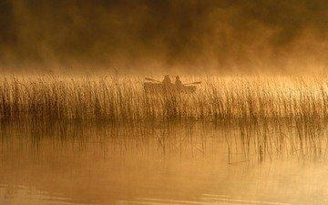 река, природа, обои, пейзаж, туман, люди, лодка, lakes, камыш, людей, рек