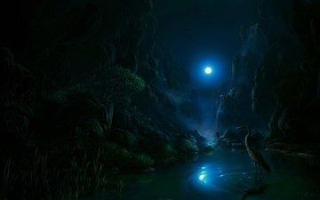 night, the moon, heron
