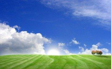 небо, трава, деревья, холмы, поля, поле, пейзажи