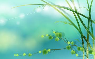 весна, листочки, ветер