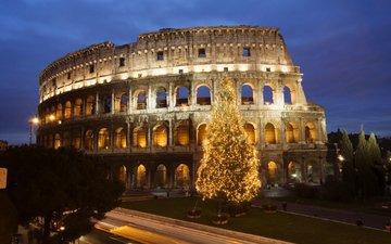 елка, колизей, рим