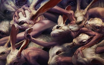 rabbits, ryohei hase, fight, mutants