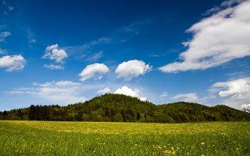 трава, холмы, зелень, австрия, ландшафт, spring nature, carinthia austria, грин