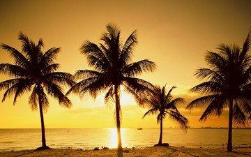 восход, солнце, море