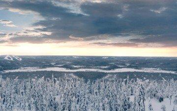 облака, деревья, снег, лес, зима