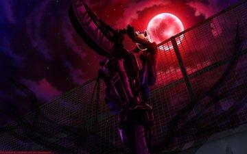 мотоцикл, moon, durarara!!, sturluson selty, ноч, звезд