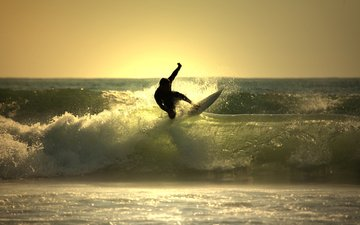 water, wave, the ocean, surfing, board for surfing