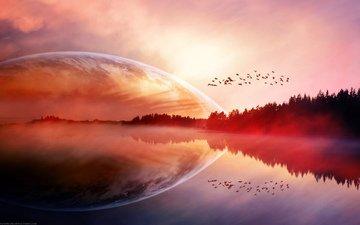 озеро, планета, птицы, краcный, planets, на природе, пернатые